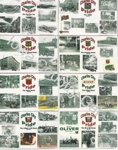 NEW OLIVER COLLECTOR'S LAMINATED PLACEMATS / WALL HANGINGS SET OF 8 #Oliver