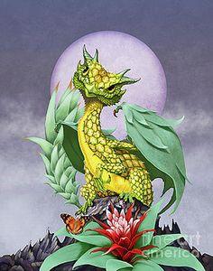 Pineapple Dragon by Stanley Morrison
