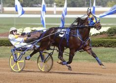 Standardbred Harness Racing - Pacing