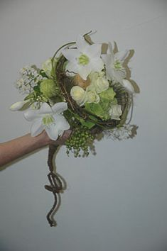 Amaryllidaceae or Eucharis - One of the absolute favourite weddingflower. Discover them on www.eucharis.nu