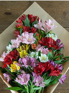 Colourful Mix of Alstroemeria - Apply Flowers Direct Promo Code to save more money plus get free shipping Flowers Direct, Floral Wreath, How To Apply, Coding, Money, Free Shipping, Color, Floral Crown, Silver