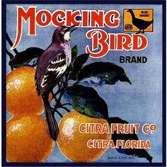 Citra Florida Mocking Bird Orange Crate Label Art Print