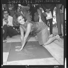 Sophia Loren pressing her hands into wet cement at Hollywood Walk of Fame, 1962