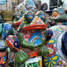 Looks sad because it needs a home.. Talavera Frog Planter de Barrio Antiguo