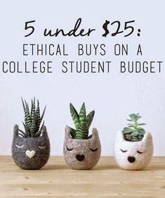 Earth Day is around the corner - and you shouldn't have to break bank to support ethical brands.
