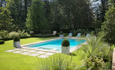 European Classic - traditional - pool - atlanta - Land Plus Associates, Ltd