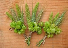 Beer hops boutonniere Perfect for a late summer/early fall wedding. I've definately been seeing hops at the market fall wedding beery bouts Hops Wedding, Brewery Wedding, Wedding Shit, Corsage Wedding, Wedding Bouquets, Wedding Flowers, Bridesmaid Bouquets, Groomsmen Boutonniere, Root Beer
