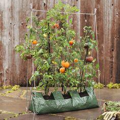 Vertical Grow Frame with Grow Bag