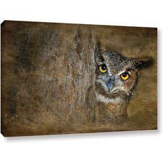 Antonio Raggio 'Peeping Owl' Gallery-Wrapped Canvas, Size: 12 x 18, Silver