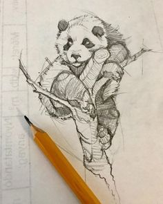 Pencil Drawing Tutorials ArtStation - traditional and digital sketches from december, psdelux . Pencil Drawings Of Animals, Animal Sketches, Drawing Sketches, Art Drawings, Draw Animals, Panda Sketch, Panda Drawing, Realistic Rose Drawing, Nature Sketch