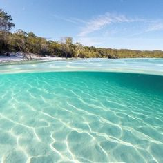 """Fancy a dip? #LakeMcKenzie on #FraserIsland is what's known as a 'perched lake' - so it's basically a giant natural swimming pool, completely full of fresh rainwater. Fraser Island is home to 40 of these lakes, which is actually half of the world's perched freshwater dune lakes."