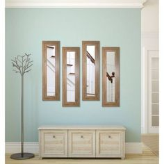 Rayne Brown Barnwood Mirror Panel, Set of 4
