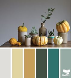 """Very nice pallet -- """"color harvest"""" -- and rare in that that the scheme is more successful than the original photo. Nice balance of warm golds with cool blue grays. Then the punch of color in teal and eucalyptus green."""