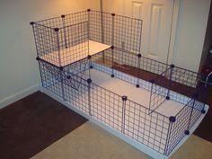Simple C & C cage More