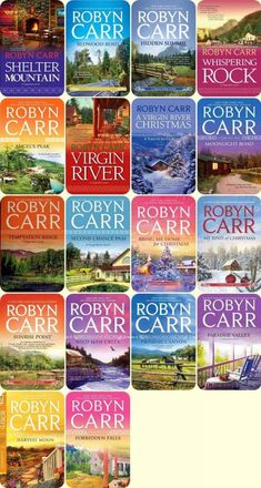 Virgin River series by Robyn Carr -- read them all and loved them! Wish she would keep them going.