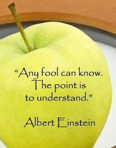Understanding is the important part.