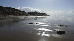 The National Trust's Formby, Merseyside, is a glorious beach with dramatic sand dunes, surrounded by sweeping coastal pinewoods.