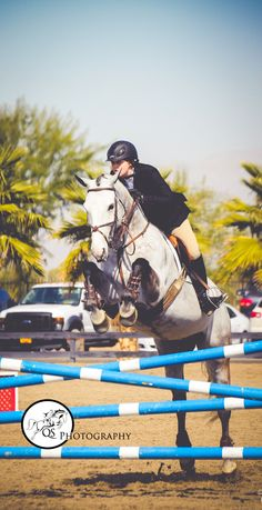 Maclay Medal at HITS Thermal 2013 Copyright Quinn...