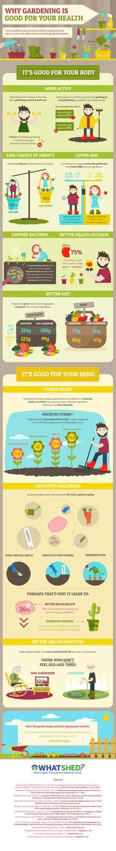 Health Benefits Of Gardening - Infographic Benefits Of Gardening, Gardening Tips, Organic Gardening, Urban Gardening, Vegetable Gardening, Get Healthy, Healthy Life, Health And Beauty, Health And Wellness
