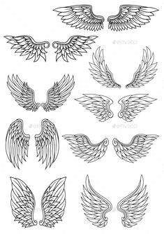 Set of heraldic wings outline in black and white with feather detail for use in heraldry and religion design - Set of heraldic wings outline in black and white with feather detail for use in heraldry and religi - Stencils Tatuagem, Tattoo Stencils, Tattoo Sketches, Tattoo Drawings, Art Sketches, Rosen Tattoo Frau, Wings Sketch, Bird Sketch, Graffiti