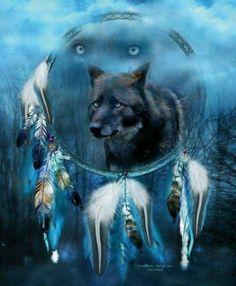 Wolf Medicine