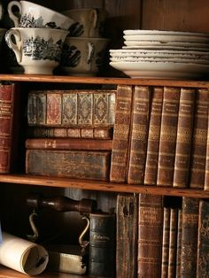 old leather books and shelves
