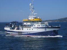 Ángeles Alvariño Instituto Español de Oceanografía