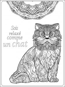 Display Image Coloriage Adulte Soit Relax Comme Un Chat