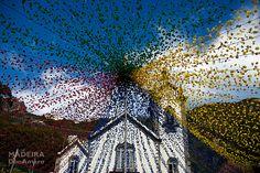 Color burst of an 'Arraial' (traditional regional festivity). St. Peter Festivities (Festa de São Pedro)  Photo location the Church at Ribeira Brava, Madeira Island.