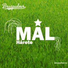 Hvordan organisere dine hårete mål! http://www.bruspulver.no/2013/12/19/hvordan-organisere-dine-harete-mal/
