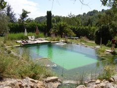 10 best Hotels with Natural Swimming Pools images on Pinterest ...