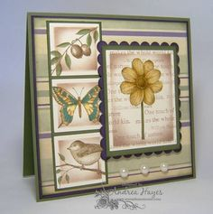 Touched by Nature by stampinandrea - Cards and Paper Crafts at Splitcoaststampers