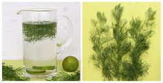Colakraut Sirup & infused Water