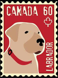 This is cute. Labrador Retriever Art Poster Postage Stamp Series by GoingPlaces2