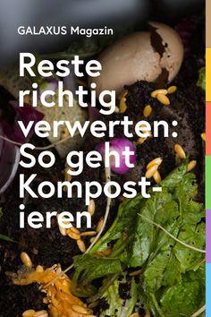 Biologisch abbaubaren Abfall separat zu sammeln, ist vorbildlich, nachhaltig und ökologisch sinnvoll. Doch nicht alles gehört auf den Kompost. Welche Küchen- und Gartenabfälle du kompostieren solltest und was du besser sein lässt, erfährst du hier.