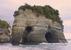 Curiosidades. Roca elefante, Nueva Zelanda