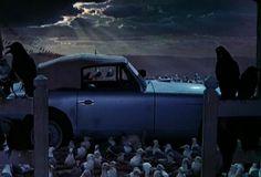The Birds (1963) | Alfred Hitchcock #horror #mystery #gizem #gerilim #korkufilmi