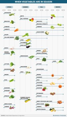 Here's when fruits and vegetables are actually in season - Obst Fotografie Season Fruits And Vegetables, Fall Fruits, Fall Vegetables, In Season Produce, Fruit In Season, Fruit Season Chart, Foods In Season, Different Fruits And Vegetables, List Of Vegetables