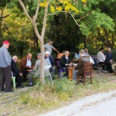 Old guys playing tavli (backgammon)