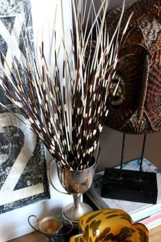 Quite like these anyway, not sure how we can incorporate it, but its just a flash of africa that the english always comment on because they would never have seen porcupine quills before South African Decor, African Home Decor, African Interior Design, African Design, African Room, African Art, Africa Decor, Art Tribal, British Colonial Style