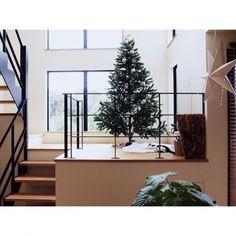ayacco240さんの、Overview,観葉植物,IKEA,階段,吹き抜け,ニトリ,クリスマス,ZARAHOME,アイアンについての部屋写真