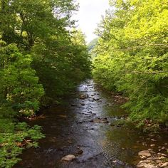 Soak up those summer springs in the Smokies. Head over to gatlinburg.com to start planning your summer getaway to #Gatlinburg. by visitgatlinburg