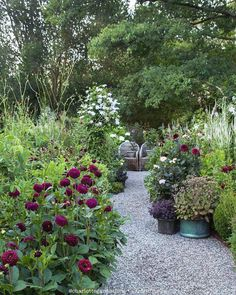 70 Magical Side Yard And Backyard Gravel Garden Design Ideas - Backyard Garden Inspiration Small Cottage Garden Ideas, Cottage Garden Design, Love Garden, Shade Garden, Backyard Cottage, Garden Kids, Garden Deco, Gravel Garden, Garden Paths