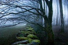 old stone road via elvenrealm on Tumblr