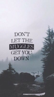Don't let the Muggles get you down | Harry Potter Lockscreen
