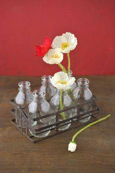 Bottle Caddy (6 Bottles)   Save On Crafts - $8.99, 6/$48