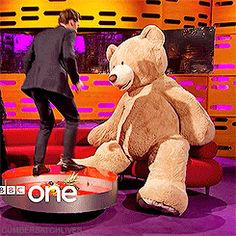 Benedict vs. Giant Stuffed Bear. I think we'd all do this, given the opportunity? // WHEEEEEEEEE!!