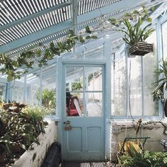 really want me a greenhouse one day