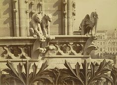 Unidentified photographer, Notre Dame de Paris, Tower Galleries, ca. 1870-86. Albumen print. 15/5/3090.01425, Andrew Dickson White Architectural Photographs Collection. Division of Rare and Manuscript Collections, Cornell University Library