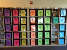 252 Basics Organizational Bins Storage
